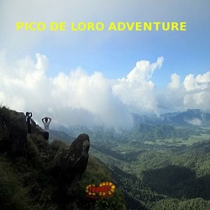 pico de loro best tour